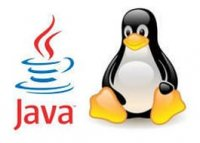 Как установить Oracle (Sun) Java JRE на Linux Mint